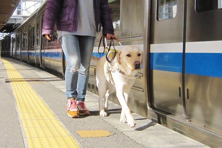 公益財団法人九州盲導犬協への支援